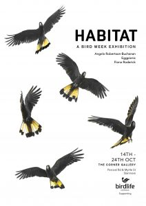Bird Week Exhibition by Eggpicnic, Angela Robertson-Buchanan and Fiona Roderick
